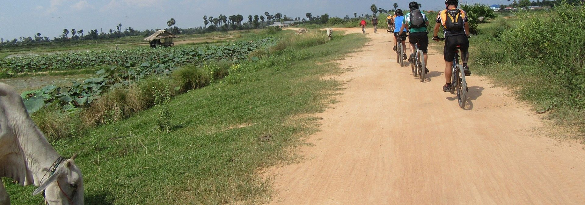 Cycling_unpaved_roads_Cambodia.jpg