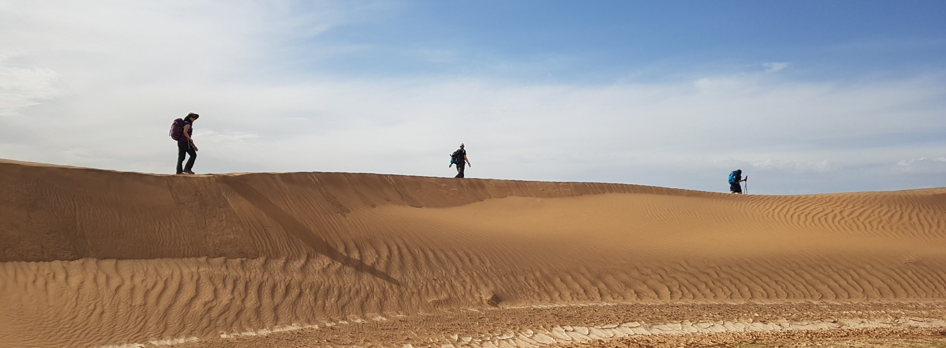 Trekking the dunes in the Sahara