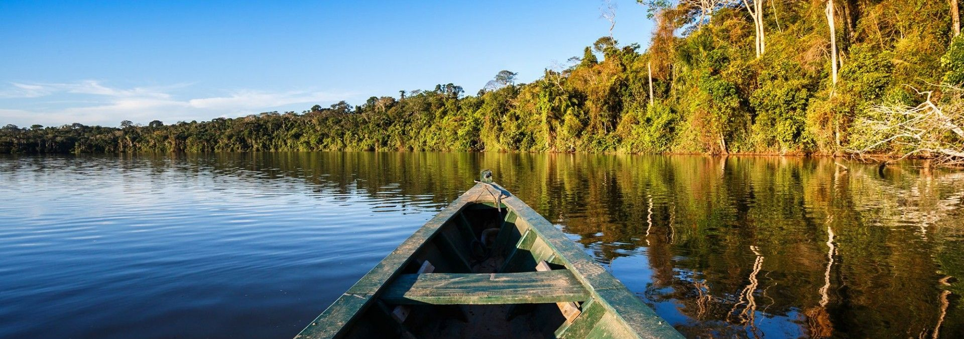 Amazon Rainforest by boat