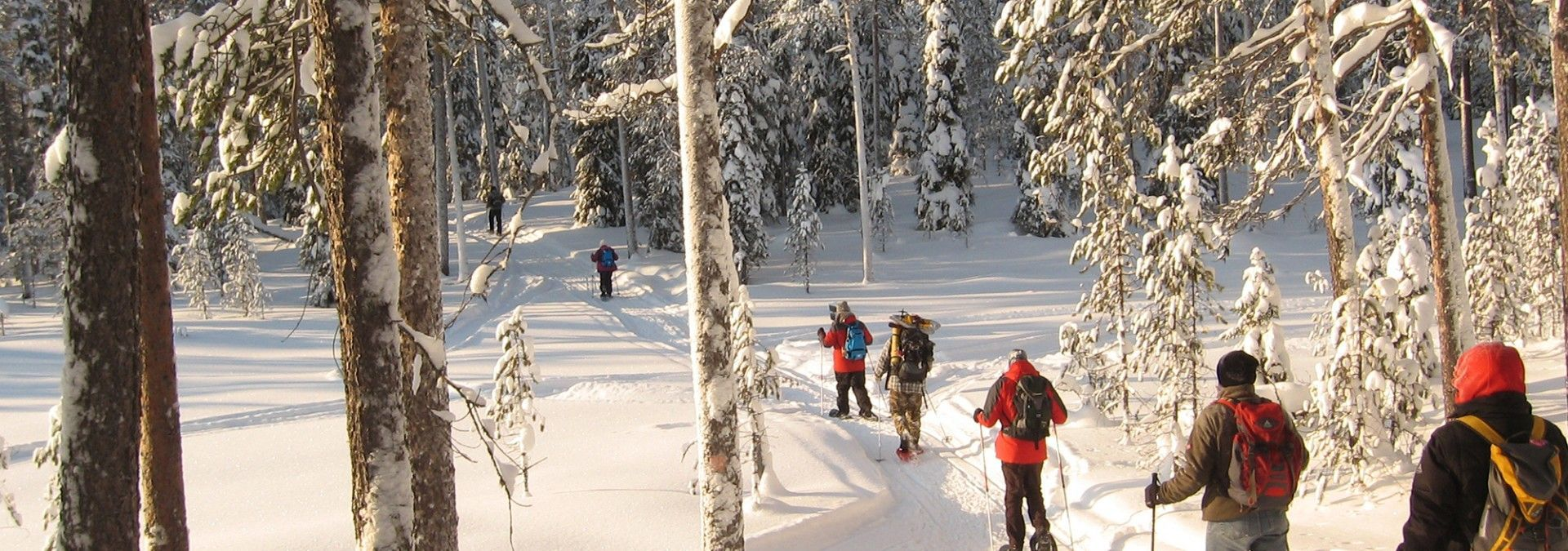 Snow-shoeing_through_forest_Finland.jpg