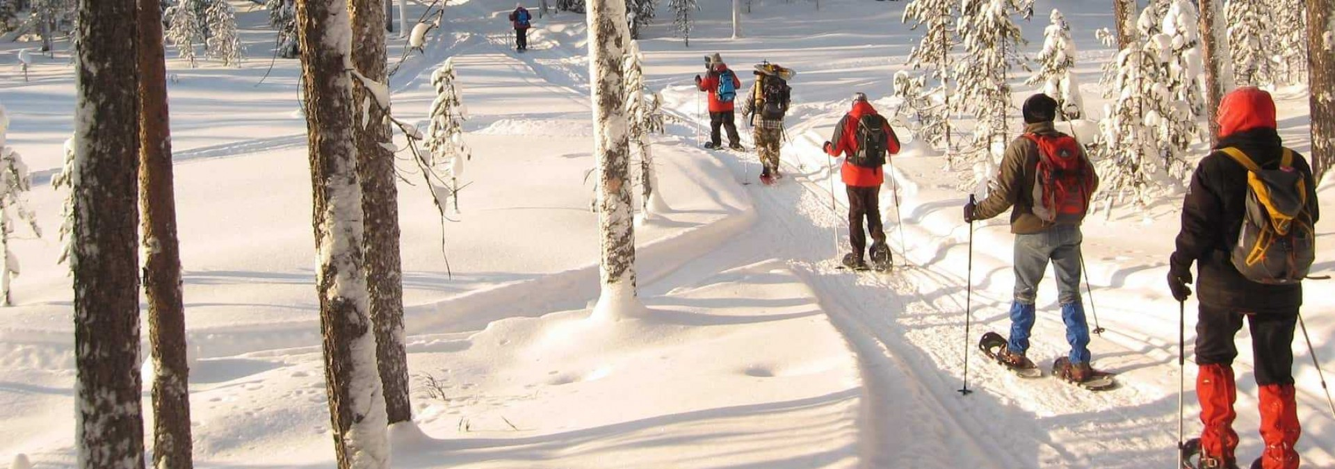 Snowshoeing in forest