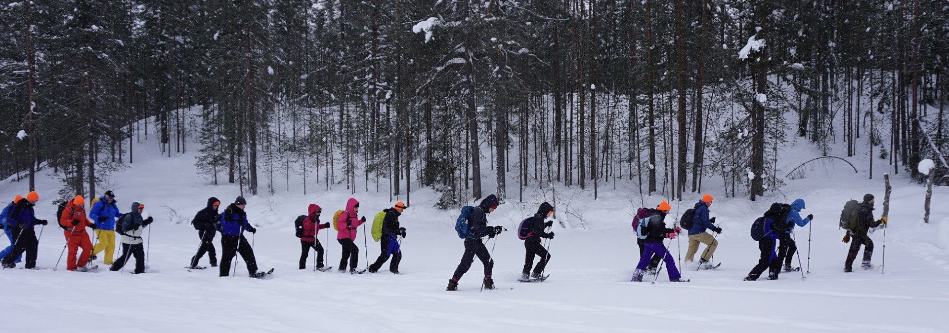 Snow-shoeing in a magical wonderland