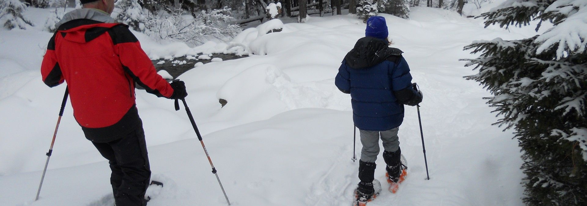 Perfect conditions for snowshoeing