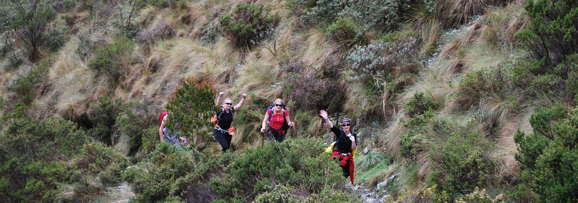 Trekking_Mountain_Path_Inca_Trail.jpg