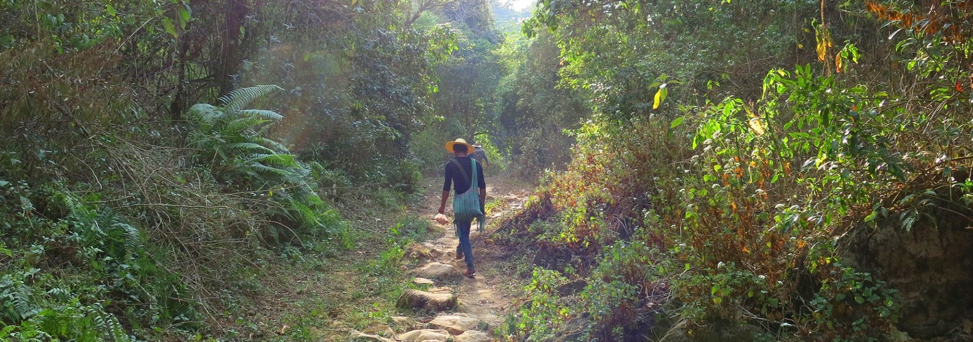 Trekking_through_forested_hills_Burma.jpg