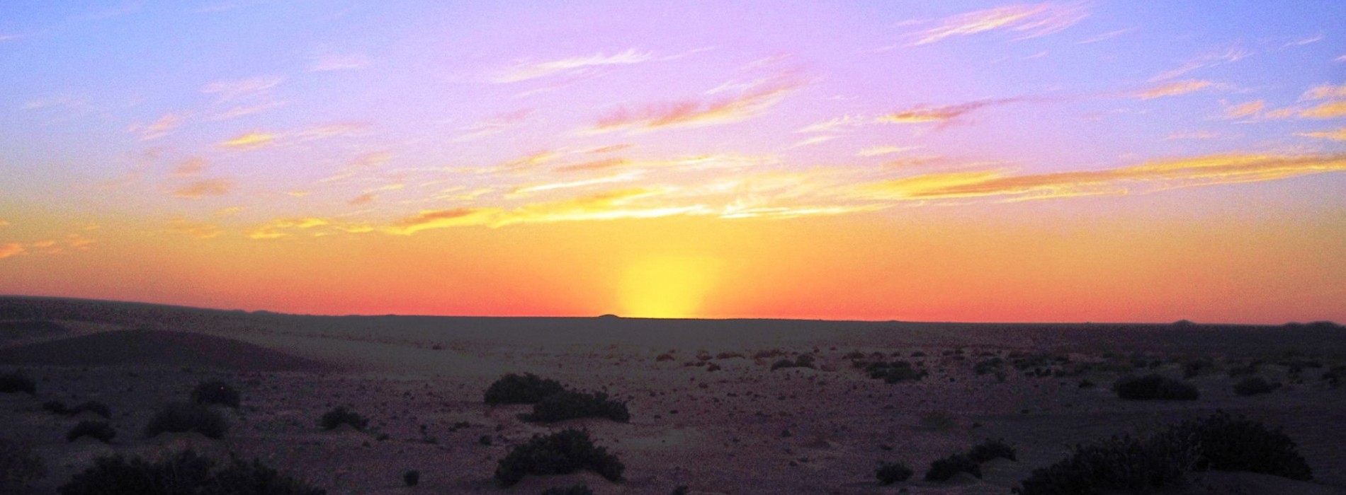 Sunrise in the Sahara Desert