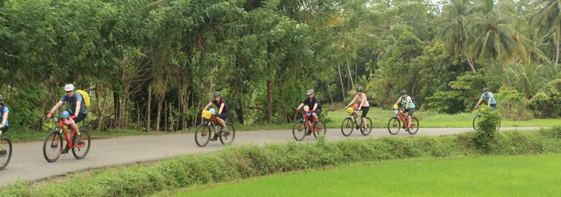 Passing rice paddies and grasslands
